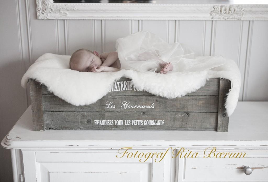 Babyfotografering - baby sover i sjokoladekasse