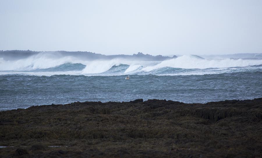 Bilde fra Island - bølger som bryter