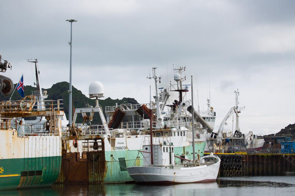 Fototur til Island. Deler av fiskeflåten i havnen